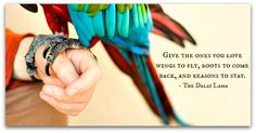 """""""Give the ones you love wings to fly, roots to come back and reasons to stay."""" – Dalai Lama"""