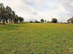 pozemok 783 m2 a 706 m2 na výstavbu domov - Podhorany