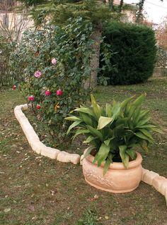 vaso-azalea-M,-bordura-per-aiuole-P-villanova-del-ghebbo.jpg (590×799)