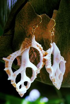 Hand made shell jewelry   Made in hawaii
