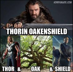 Thor-and-Oak-and-SHIELD  <---- Love Thorin Oakenshield.  And the actor, Richard Armitage, is really good in the Hobbit movies and North and South.  Can't wait to see him in Into the Storm!  And I am absolutely DREADING the end of the third Hobbit in December...<-- Yep - we all know how that one turned out...