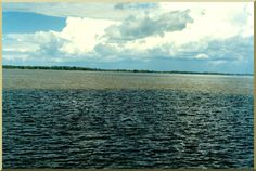 """The """"Meeting of the Waters"""" on the Amazon River occurs about 8 miles from Manaus, Brazil, when the """"white"""" Solimoes River meets the """"black"""" Rio Negro."""