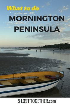 The Mornington Peninsula is a great day or weekend trip away from Melbourne. Let us tell how to get the most out of the Mornington Peninsula with kids. Travel With Kids, Family Travel, Melbourne, Solo Travel, Travel Tips, Travel Destinations, Weekend Trips, Romantic Travel, Australia Travel