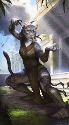 LG-avatar-Khajiit_Female_1.png (265×479)