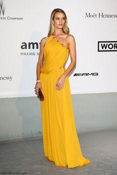 Rosie Huntington-Whiteley in Emilio Pucci dress at Cannes amfAR Gala 2014.
