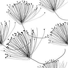 graphique, noir et blanc graphic, black and white