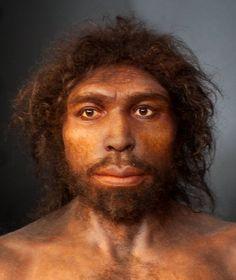 Homo rhodesiensis Panthera Leo Spelaea, Theory Of Evolution, Human Evolution, Human Family Tree, Forensic Artist, Forensic Facial Reconstruction, Prehistoric World, Cultura General, Strange History