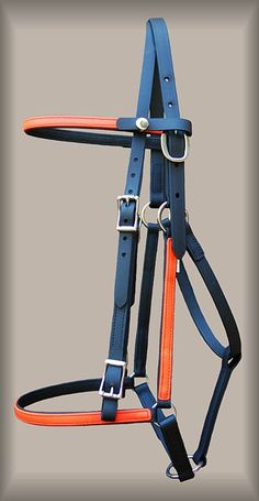 Halter bridle combo-you can take the bit out so the horse can eat in the vet check. Those gut sounds are very important