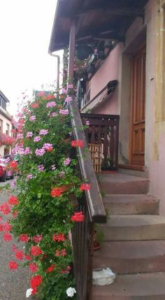 Balcones Alsacia