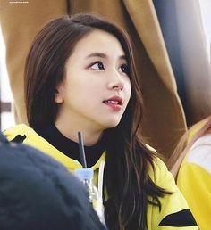161204 .  cr; owner - - #twice #chaeyoung  #kpoplfl #jihyo  #kpopf4f #kpopfff  #kpopexlikes #sana #kpopl4l #got7