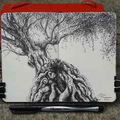 "Mi libreta para árboles. Lidia Barragán. ( Moleskine 9 x 14 cm - 3 1/2"" x 5 1/2"" ) #moleskine #sketch #tree #drawings"