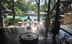 Az 5 és fél csillagos Constance Le Muria Resortban fogyasztjuk el vacsoránkat, büfé jelleggel. Vacsora partnerünk a szálloda marketingese, akitől többek között megtudjuk, hogy a hotelnek van egy saját turtle managere, aki a kis teknősökkel foglalkozik, hogy eljussanak a partról a... Travel, Viajes, Destinations, Traveling, Trips