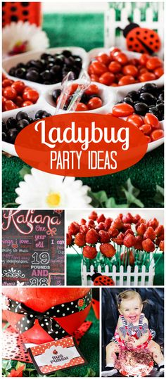 Wow, such a terrific lady bug party! It has a red and black color scheme and an outdoor setting. See more party planning ideas at CatchMyParty.com!