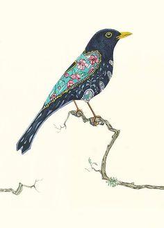Bildergebnis für blackbird drawing