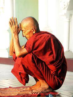 Praying monk, Burma. Shwedagon Paya, Rangoon, Burma (Myanmar)