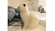 Egmont Rabbit Lamp   SNOWFLAKE kindermöbel concept store