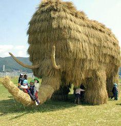 5.7 meter high, 10 meter long mammoth made of rice straw. Seiyo, Ehime Prefecture.