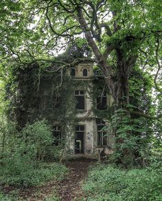 Overgrown abandoned villa in Germany - Abandoned Architecture - Big City Buildings - Modern and Historical Buildings - City Planning - Travel Photography Destinations - Amazing Ugly and Beautiful Places Abandoned Buildings, Old Abandoned Houses, Abandoned Mansions, Old Buildings, Abandoned Places, Old Houses, Abandoned Castles, Haunted Places, Photo Post Mortem