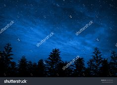 Forest In Silhouette With Starry Night Sky , Elements Of This Image Are Furnished By Nasa Стоковые фотографии 321921014 : Shutterstock Starry Night Sky, Night Skies, Forest Silhouette, Splashback, Nasa, Northern Lights, Photo Editing, Royalty Free Stock Photos, Illustration