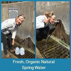 Went to Chalk Lake to fill up on FREE Spring Water. Fresh, Organic and Alive! Natural Spring Water, Step Program, Living Water, Green Gifts, Spring Nature, Organic Recipes, Get Healthy, Fill, Key