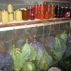 Conservation pour l'hiver : Si vous avez encore quelques petites récoltes de légumes ou de fruits.... voici un petite astuce pour les conserver : Poires et Courges : Faites fondre de la cire à cach...