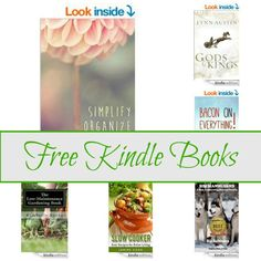 Free Kindle Book List: Gods And Kings, Simply Organize Declutter, Slow Cooker,and More
