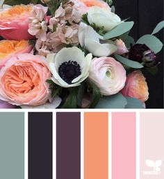 Color Flora via @designseeds