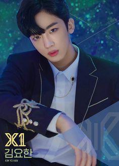 Produce X 101 - Our Top 10 Hot Picks! Jellyfish Entertainment, Woollim Entertainment, Starship Entertainment, Korean Age, Korean Idols, Lisa, Kim Min, Produce 101, Mingyu