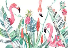 Tropical Flowers, Exotic Birds and Animals on Behance