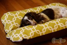 Deluxe Bunbed Dog bed for Dachshunds and other small dogs - Modern Green squares. $48.00, via Etsy.