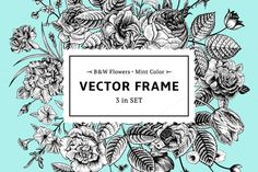 Check out Vector floral frame. B&W, mint color by olga.korneeva on Creative Market