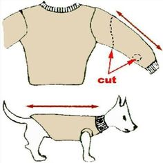 Here's a great idea on how to keep your dog warm this winter.  - Tin Retterbush