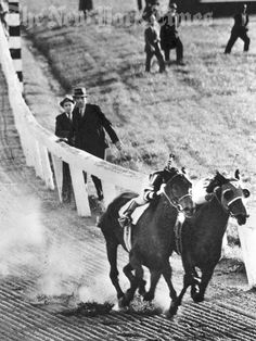 Seabiscuit and War Admiral neck and neck in the back stretch of their 1938 match race.