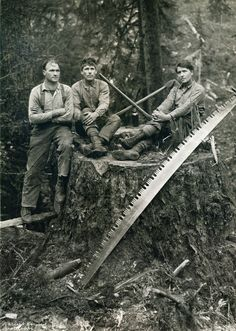 Loggers in British Columbia