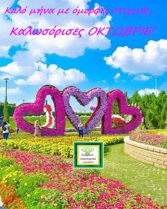 Flower Garden Images, Beautiful Flowers Garden, Beautiful Gardens, Studio Background Images, Background For Photography, Nature Photography, Beautiful Nature Wallpaper, Beautiful Landscapes, Million Flowers