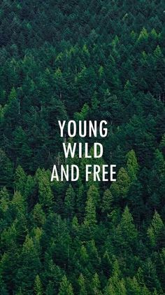 today I promess I'm not doing anything ,living young and wild and free