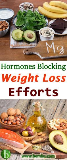 Trying to lose weight can be frustrating. Health Tips │ Health Ideas │Healthy Food │Health │Food │Desserts │Low Carb │Weight Loss │Diet │Fitness #Health #Ideas #Tips #Vitamin #Healthyfood #Food #Desserts #Lowcarb #Weightloss #Diet #Fitness