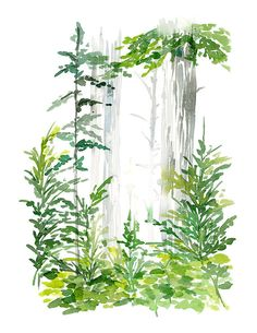Handmade Watercolor Forest of Lush Greens 8 x 10 by YaoChengDesign, $20.00