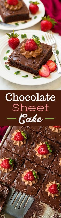 Chocolate Sheet Cake - this is the BEST chocolate sheet cake ever!! Extra chocolatey! My go to recipe.