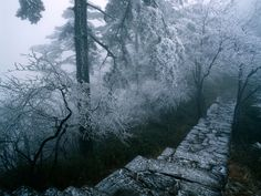 AmO Images, nature of china, nature photography Forest Wallpaper, Winter Wallpaper, Beautiful Nature Wallpaper, Winter Scenery, Winter Pictures, Rain Pictures, Computer Wallpaper, Pathways, Travel Pictures