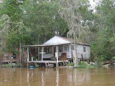 Cajun Swamp House