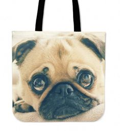 Obtain excellent ideas on Pugs. They are offered for you on our website.