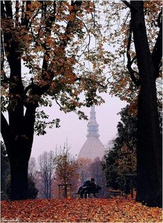 Autumn in Turin Piedmont Italy, Turin Italy, Cool Places To Visit, Places To Go, Best Of Italy, Small Group Tours, Magic City, Belle Villa, Visit Italy