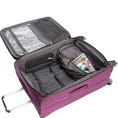 Delsey Luggage Helium Cruise 21 Inch and 25 Inch Spinner Luggage Set