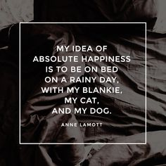 """""""My idea of absolute happiness is to be on bed on a rainy day, with my blankie, my cat, and my dog. Sleep Quotes, Anne Lamott, Rainy Days, Good Night Sleep, About Uk, Wise Words, Thats Not My, Happiness, Cats"""
