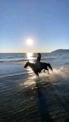 I Love Rain, Most Beautiful Horses, Beautiful Nature Scenes, Cute Love Songs, Hana, Pet Birds, Bald Eagle, Allah, Positive Quotes