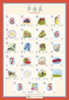 Chinese Alphabet Poster Consonants by CarouselofLanguages on Etsy Cantonese Language, Learn Cantonese, Chinese Pinyin, Chinese Alphabet, China Language, Mandarin Language, Chinese Posters, Chinese Lessons, Learn Mandarin
