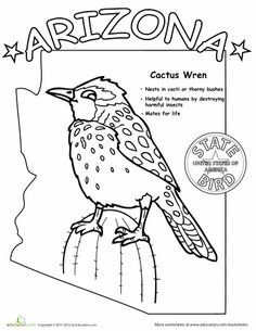 State Flag Facts Coloring Sheet for State of the Week History