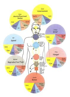 Chakras. Illustration copyright by Robert Stevens/Ashlee LaVine, based on Dr. Randolph Stone diagram