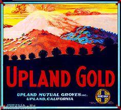 Upland San Bernardino California Gold Orange Citrus Fruit Crate Label Art Print